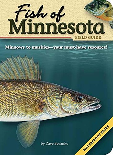 9781591931928: Fish of Minnesota Field Guide (Fish Identification Guides)