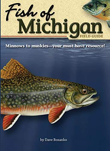 9781591931935: Fish of Michigan Field Guide (Fish Identification Guides)