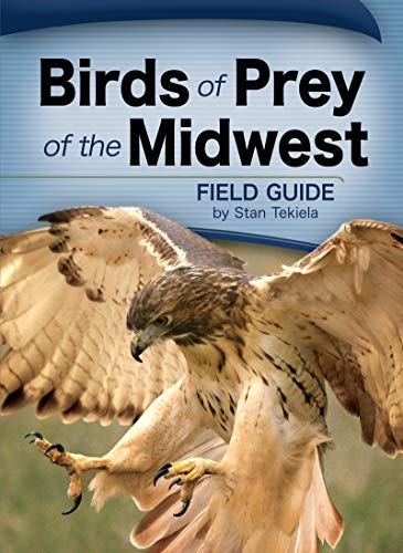 Birds of Prey of the Midwest Field Guide (Paperback)