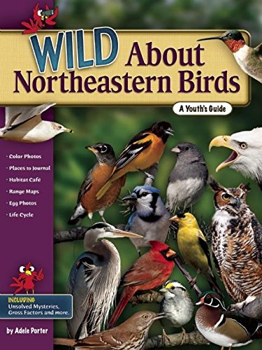 9781591932581: Wild About Northeastern Birds: A Youth's Guide (Wild About Birds)