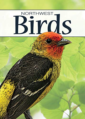 9781591933861: Birds of the Northwest Playing Cards (Nature's Wild Cards)