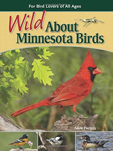 Wild about Minnesota Birds: For Bird Lovers of All Ages: Porter, Adele