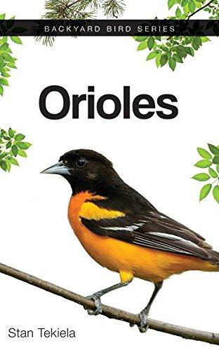 Orioles (Paperback): Stan Tekiela
