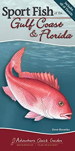 Saltwater Sport Fish of the Gulf (Quick): Bosanko, Dave