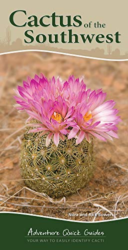 9781591935827: Cactus of the Southwest (Adventure Quick Guides)