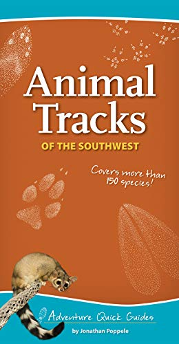 9781591935872: Animal Tracks of the Southwest (Adventure Quick Guides)