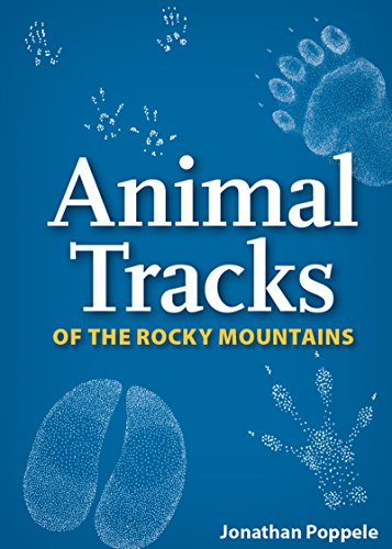 9781591936930: Animal Tracks of the Rocky Mountains (Nature's Wild Cards)