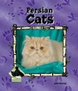 9781591973300: Persian Cats (Animal Kingdom (Buddy Books))