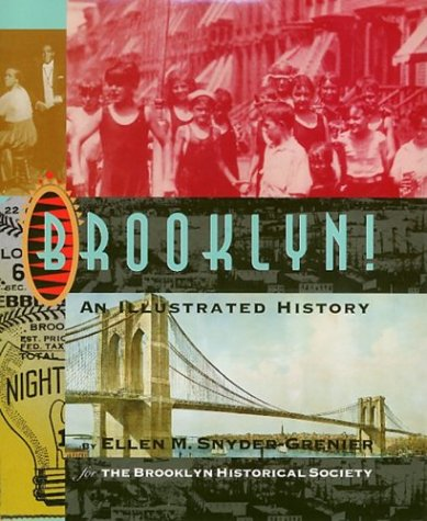9781592130825: Brooklyn: An Illustrated History (Critical Perspectives on the Past)