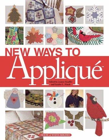 9781592170135: New Ways to Applique'