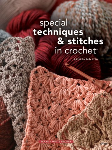 9781592172153: Special Techniques & Stitches in Crochet