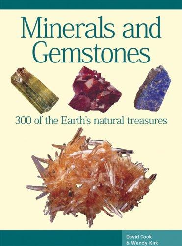 Minerals and Gemstones (Expert Guides): Cook, David; Kirk, Wendy