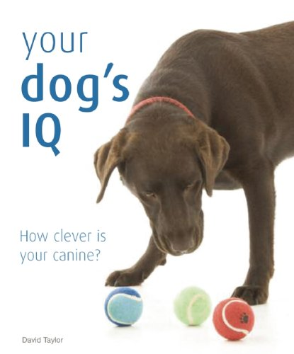 9781592239870: Your Dog's IQ: How Clever is Your Canine?