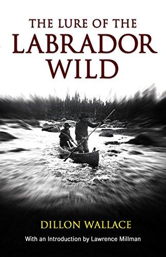 9781592285716: Lure of the Labrador Wild (Arctic Adventure)