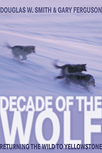 9781592287000: Decade of the Wolf: Returning the Wild to Yellowstone