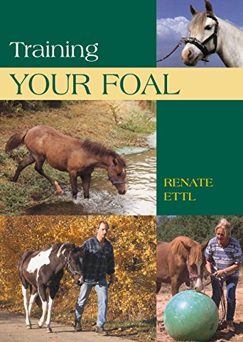 9781592287772: Training Your Foal