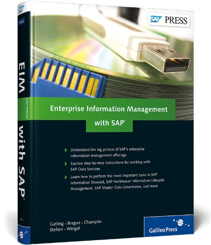 9781592294145: Enterprise Information Management with SAP