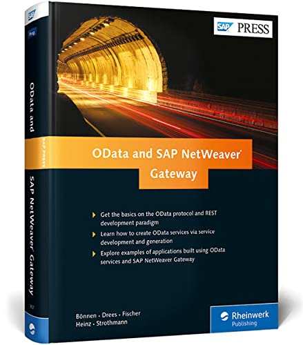 9781592299072: OData and SAP Netweaver Gateway
