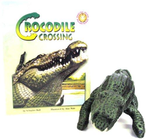 9781592490608: Crocodile Crossing - An Amazing Animal Adventures Book (Mini book with stuffed toy animal)