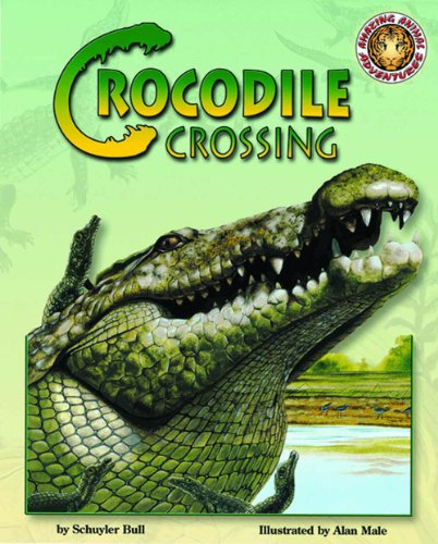 9781592493906: Crocodile Crossing - An Amazing Animal Adventures Book (with poster and audio cassette tape)
