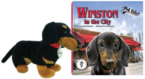 9781592494491: Winston in the City (Pet Tales Book & Toy Set) (Mini book and stuffed toy)
