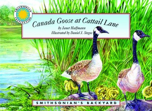 9781592494941: Canada Goose at Cattail Lane (Smithsonian's Backyard)