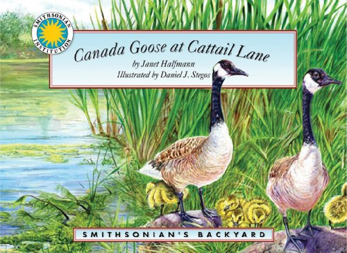 9781592494972: Canada Goose at Cattail Lane - a Smithsonian's Backyard Book (with audiobook cassette tape)