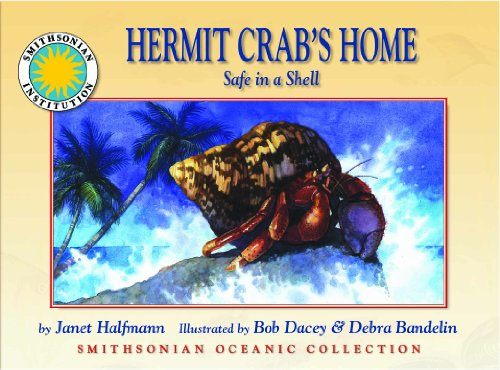 Hermit Crab's Home: Safe in a Shell: Halfmann, Janet