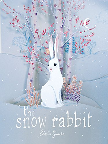 9781592701810: The Snow Rabbit