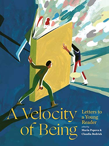 9781592702282: A Velocity of Being: Letters to A Young Reader
