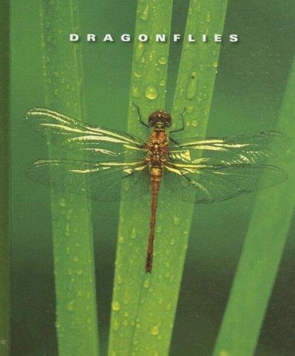 Dragonflies (Library Binding): Sophie Lockwood