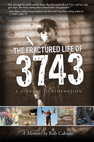 9781592984329: The Fractured Life of 3743 - A Journey to Redemption