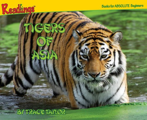 9781593014254: Tigers of Asia (Animals of Asia)