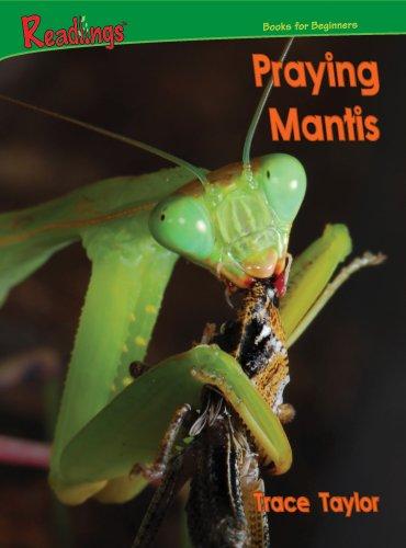 Praying Mantis (Readings): Trace Taylor