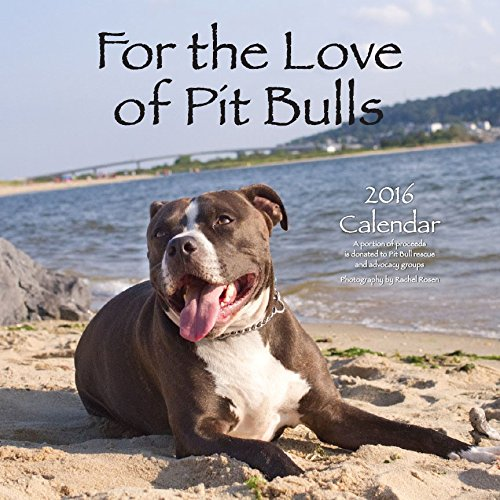 9781593167042: For the Love of Pit Bulls 2016 Calendar