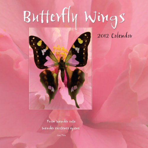 2012 Butterfly Wings Wall Calendar Wall calendar: Brush Dance Publishing