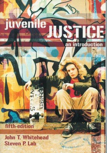9781593453183: Juvenile Justice: An Introduction