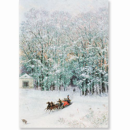 9781593591229: Sparkle Sleigh Ride Holiday Boxed Cards (Christmas Cards, Holiday Cards, Greeting Cards)