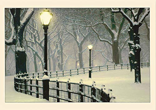 9781593591731: Peaceful Night Holiday Boxed Cards (Christmas Cards, Holiday Cards, Greeting Cards) (Deluxe Holiday Cards)