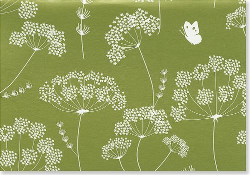 9781593591854: Queen Anne's Lace Note Cards (Stationery) (Note Card Series)