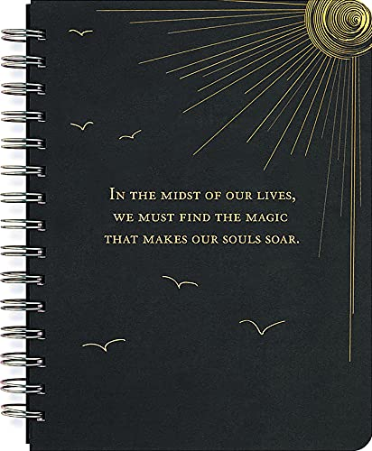 9781593594381: Soar Journal (Notebook, Diary) (Black Rock)