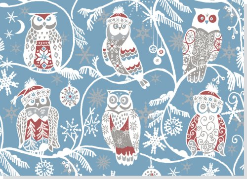 Santa Owls Deluxed Boxed Holiday Cards (Christmas Cards, Holiday Cards, Greeting Cards) (1593597940) by Peter Pauper Press
