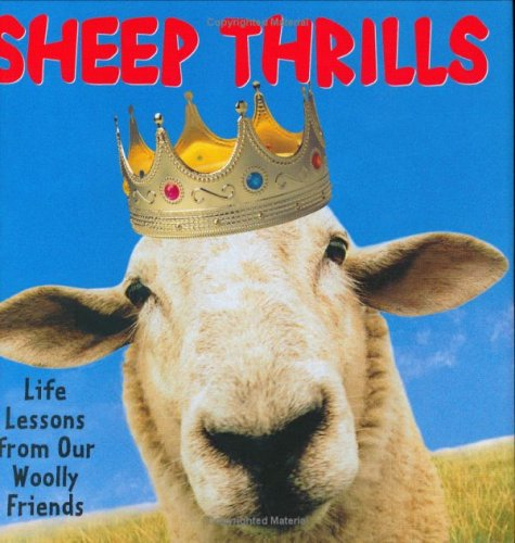 9781593599546: Sheep Thrills: Life Lessons From Our Woolly Friends
