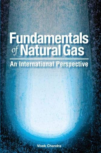 9781593700881: Fundamentals of Natural Gas: An International Perspective