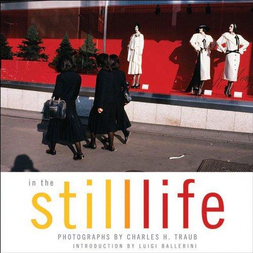 9781593720063: In The Still Life