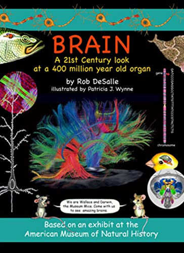 9781593730857: Brain: A 21st Century Look at a 400 Million Year Old Organ (Wallace and Darwin)