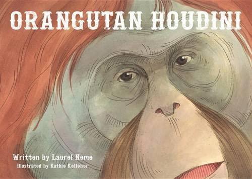 Orangutan Houdini: Neme, Laurel