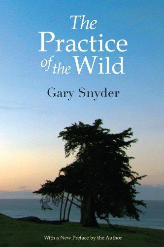 9781593760168: The Practice of the Wild: Essays