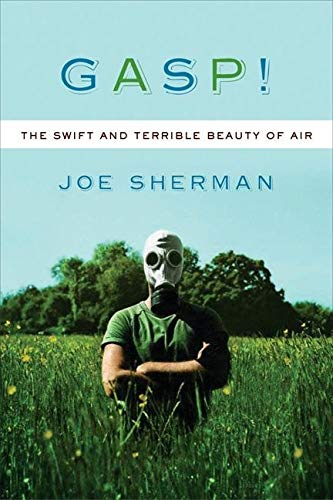 9781593760250: Gasp! The Swift and Terrible Beauty of Air