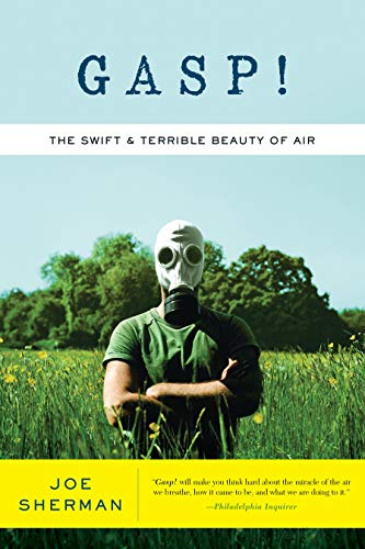 9781593761400: Gasp!: The Swift and Terrible Beauty of Air